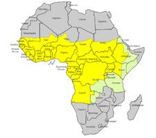 Grafik der Gelbfieberausbreitung in Afrika