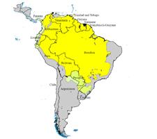 Grafik der Gelbfieberausbreitung in Südamerika